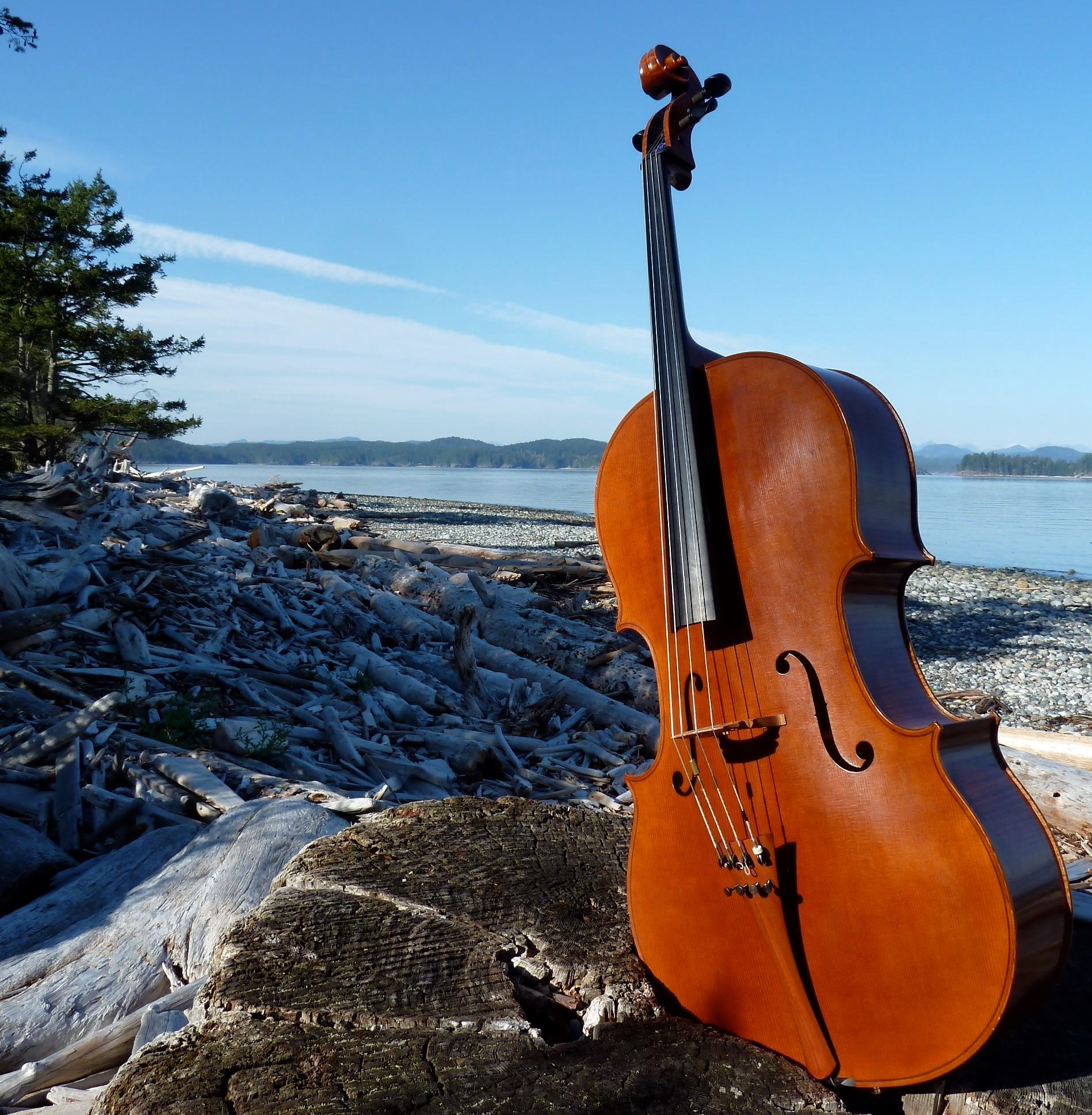 Cello on Quadra Island Beach